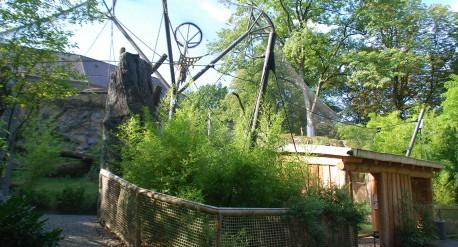 Bonoboanlage-Zoo-Wuppertal_2