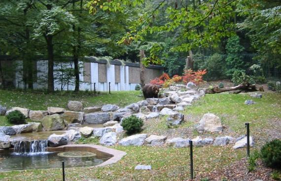 Braunbärenanlage-im-Zoo-Wuppertal_3